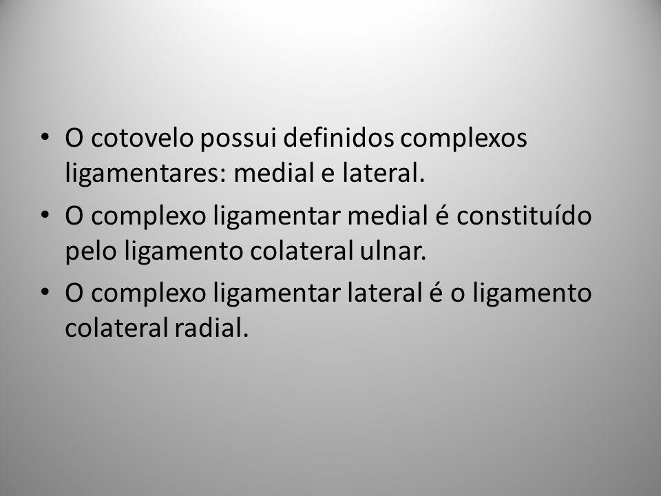 O cotovelo possui definidos complexos ligamentares: medial e lateral.