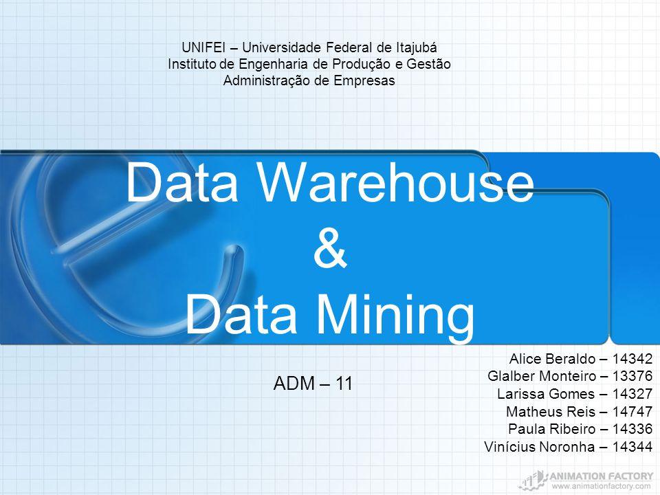 UNIFEI – Universidade Federal de Itajubá Instituto de Engenharia de Produção e Gestão Administração de Empresas Data Warehouse & Data Mining Alice Ber
