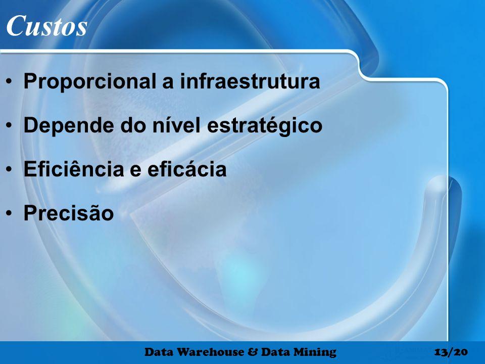 Custos Proporcional a infraestrutura Depende do nível estratégico Eficiência e eficácia Precisão Data Warehouse & Data Mining 13/20
