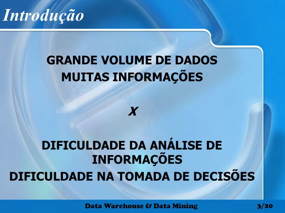 1970 198019902000 Volume dos Dados Fonte: Santos, 2000.