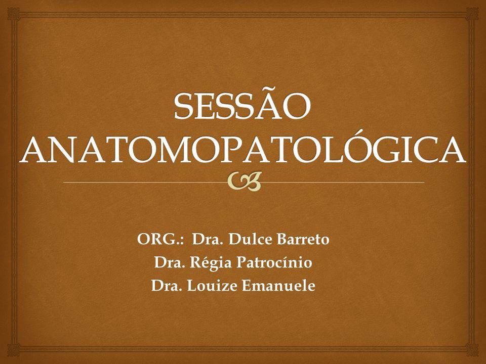 ORG.: Dra. Dulce Barreto Dra. Régia Patrocínio Dra. Louize Emanuele