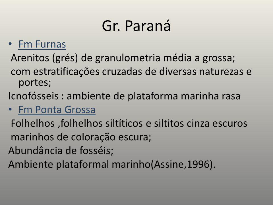 Gr. Paraná Fm Furnas Arenitos (grés) de granulometria média a grossa; com estratificações cruzadas de diversas naturezas e portes; Icnofósseis : ambie