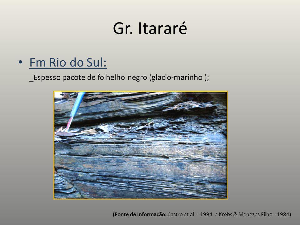 Fm Rio do Sul: _Espesso pacote de folhelho negro (glacio-marinho ); (Fonte de informação: Castro et al. - 1994 e Krebs & Menezes Filho - 1984)