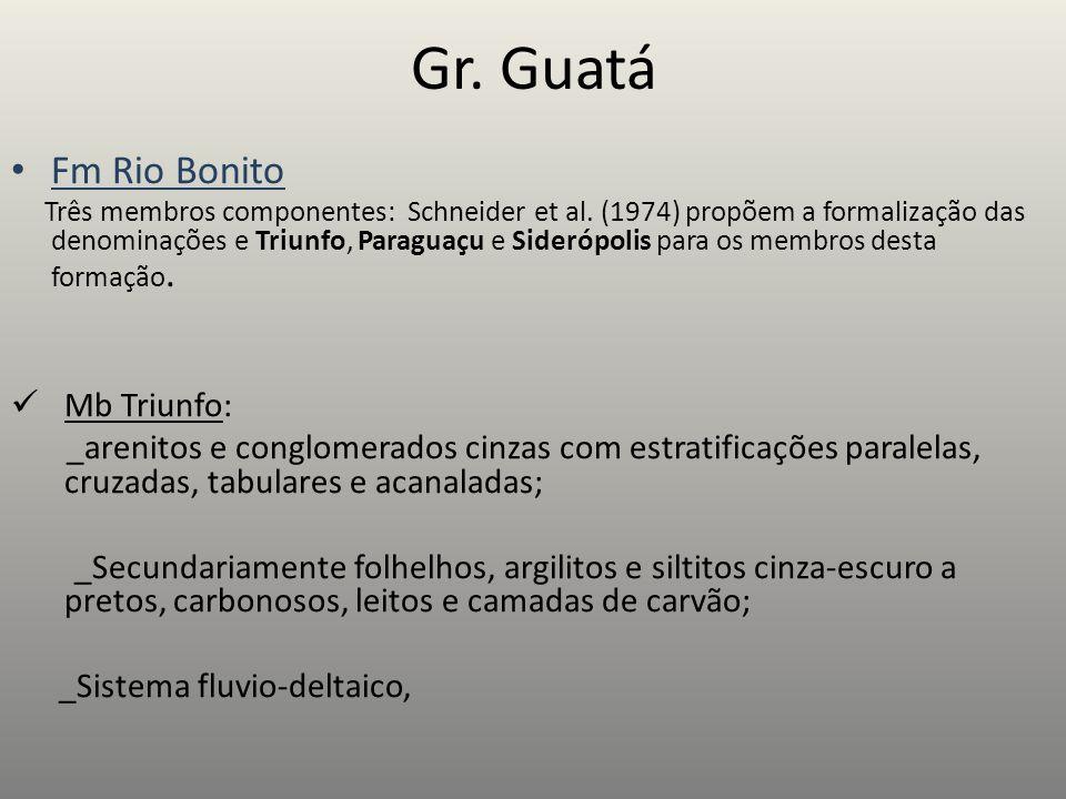 Gr. Guatá Fm Rio Bonito Três membros componentes: Schneider et al. (1974) propõem a formalização das denominações e Triunfo, Paraguaçu e Siderópolis p