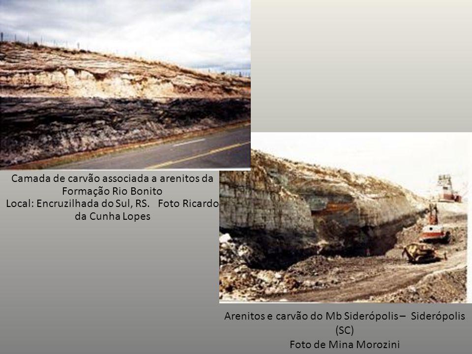 Camada de carvão associada a arenitos da Formação Rio Bonito Local: Encruzilhada do Sul, RS. Foto Ricardo da Cunha Lopes Arenitos e carvão do Mb Sider