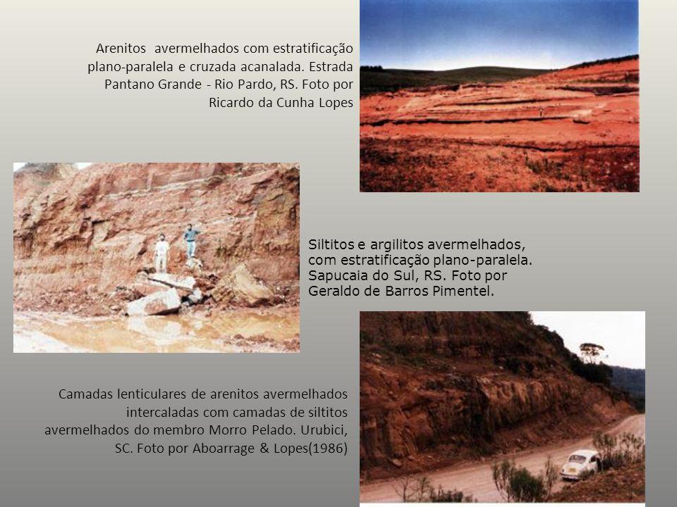 Arenitos avermelhados com estratificação plano-paralela e cruzada acanalada. Estrada Pantano Grande - Rio Pardo, RS. Foto por Ricardo da Cunha Lopes S