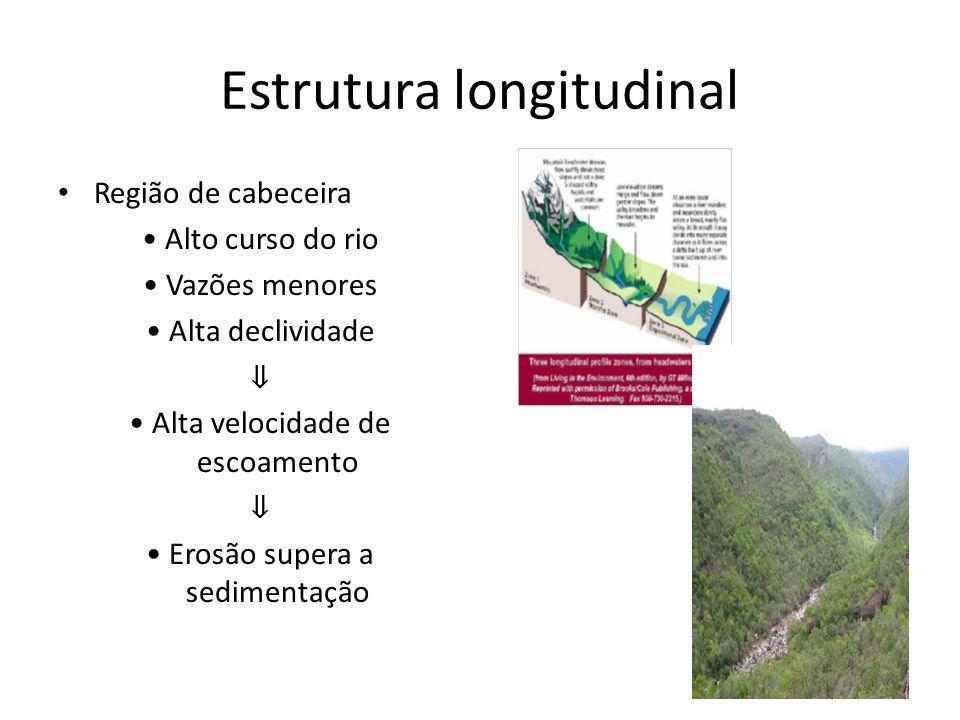 Região de cabeceira Alto curso do rio Vazões menores Alta declividade Alta velocidade de escoamento Erosão supera a sedimentação