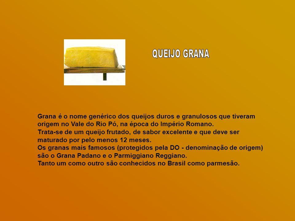 Grana é o nome genérico dos queijos duros e granulosos que tiveram origem no Vale do Rio Pó, na época do Império Romano.