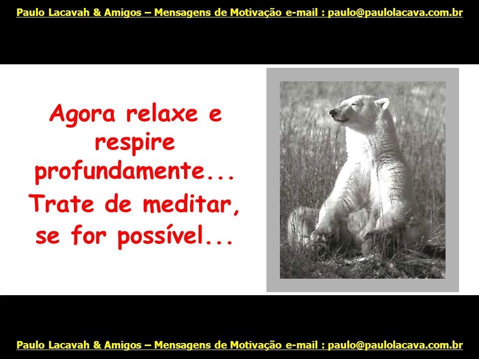 É fácil! Comece sorrindo... Paulo Lacavah & Amigos – Mensagens de Motivação e-mail : paulo@paulolacava.com.br