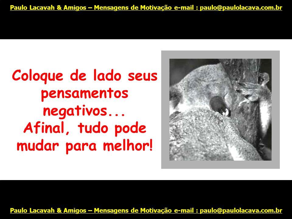 Ou vá dar um passeio para clarear a mente! Paulo Lacavah & Amigos – Mensagens de Motivação e-mail : paulo@paulolacava.com.br