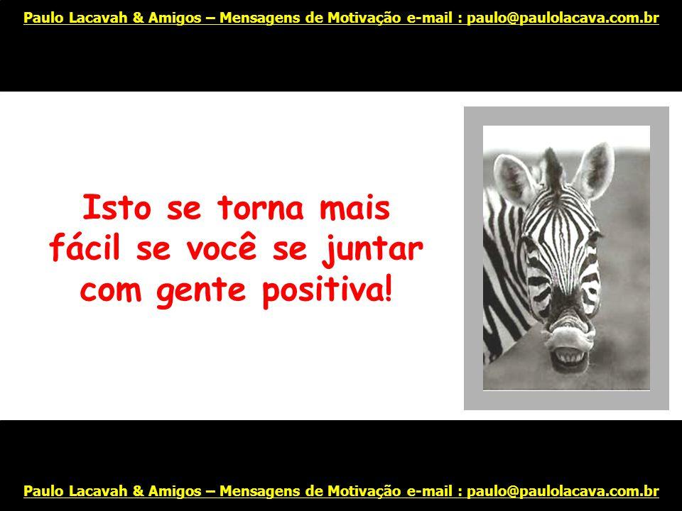 E não perca a capacidade de rir, inclusive de você mesmo... Paulo Lacavah & Amigos – Mensagens de Motivação e-mail : paulo@paulolacava.com.br