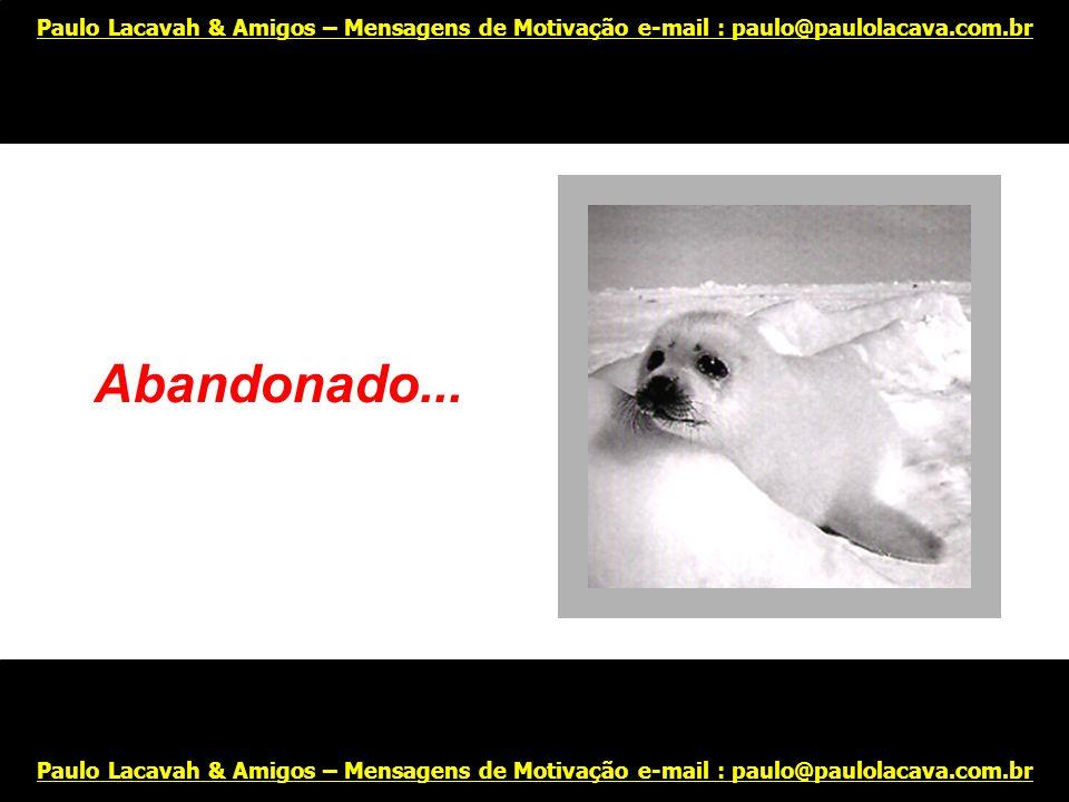 Carrancudo... Paulo Lacavah & Amigos – Mensagens de Motivação e-mail : paulo@paulolacava.com.br