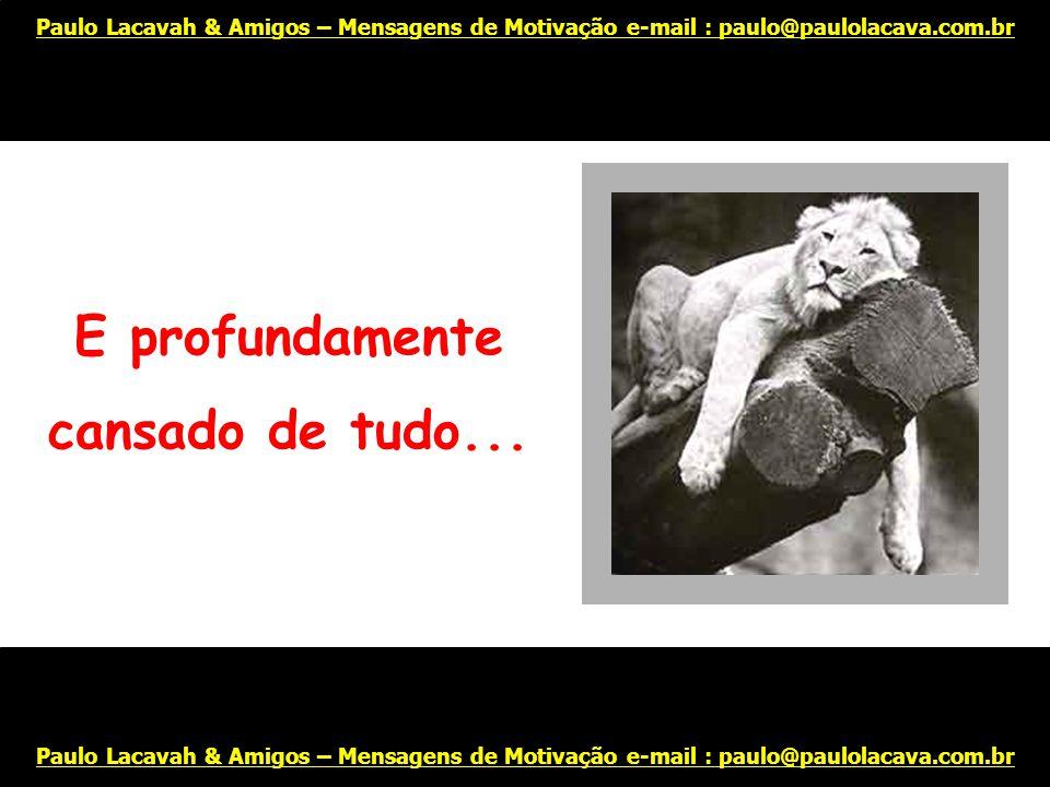Abandonado... Paulo Lacavah & Amigos – Mensagens de Motivação e-mail : paulo@paulolacava.com.br