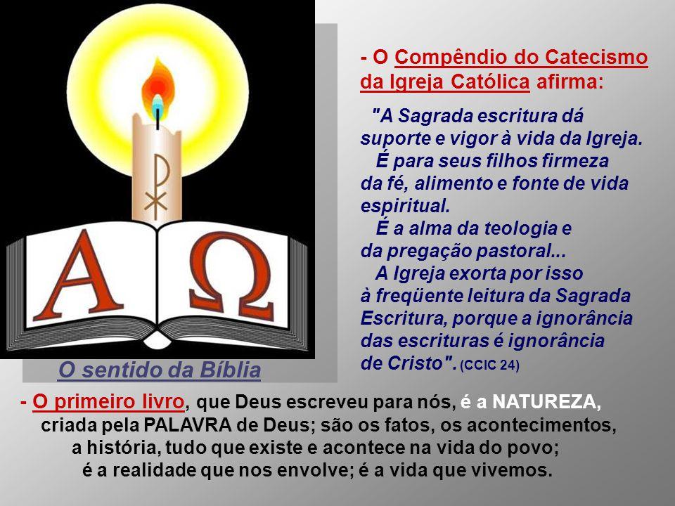- A própria Igreja, no Concílio Vaticano II, redescobriu o valor da Bíblia e fez dela a fonte de inspiração para um profundo trabalho de renovação. Al