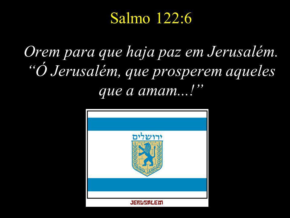 Comecemos agora! Envie esta mensagem a seus amigos, judeus ou não, não importa. A verdade e a PAZ são valores comuns para todos nós.