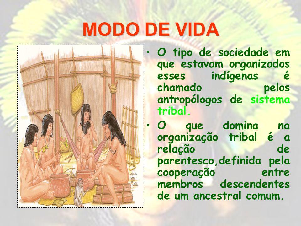 MODO DE VIDA O tipo de sociedade em que estavam organizados esses indígenas é chamado pelos antropólogos de sistema tribal.