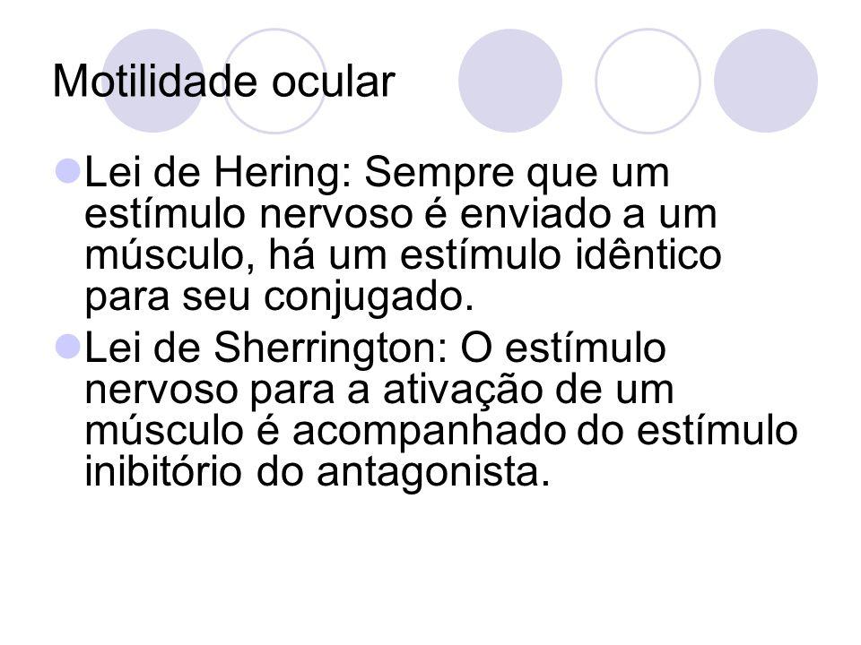 Motilidade ocular Lei de Hering: Sempre que um estímulo nervoso é enviado a um músculo, há um estímulo idêntico para seu conjugado. Lei de Sherrington