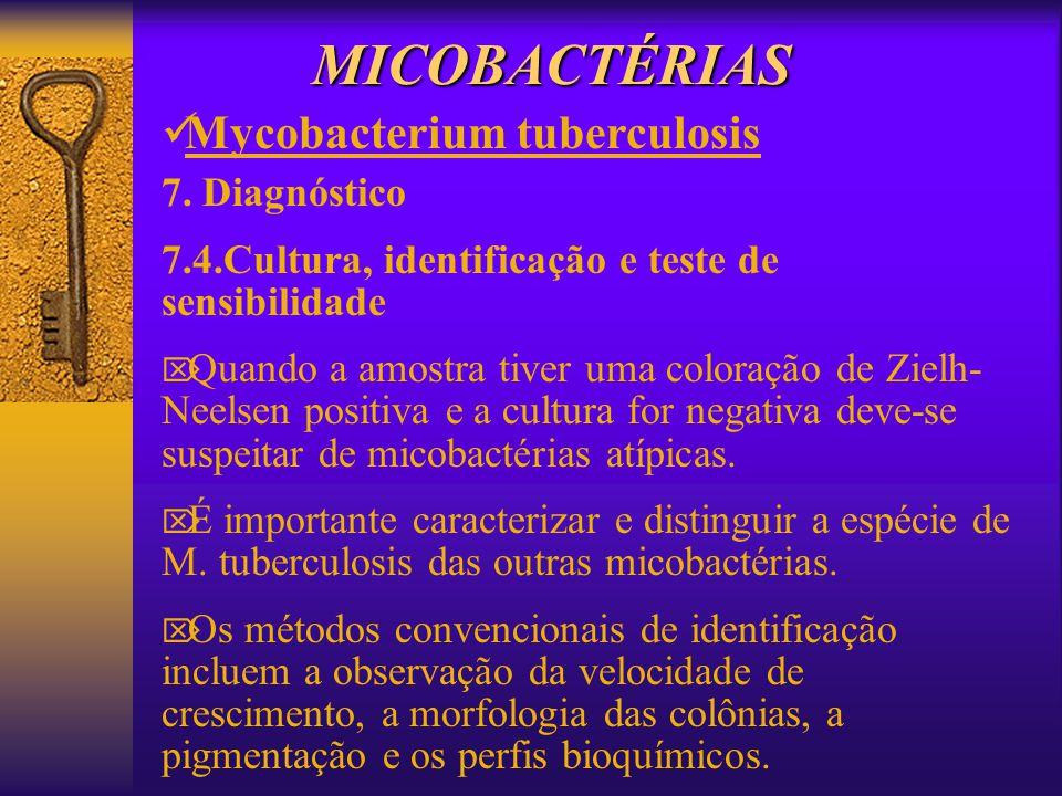 MICOBACTÉRIAS Mycobacterium tuberculosis 7. Diagnóstico 7.4.Cultura, identificação e teste de sensibilidade Quando a amostra tiver uma coloração de Zi