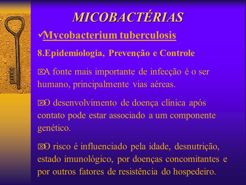 MICOBACTÉRIAS Mycobacterium tuberculosis 8.Epidemiologia, Prevenção e Controle A fonte mais importante de infecção é o ser humano, principalmente vias