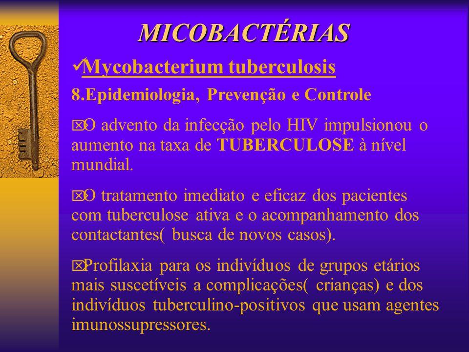 MICOBACTÉRIAS Mycobacterium tuberculosis 8.Epidemiologia, Prevenção e Controle O advento da infecção pelo HIV impulsionou o aumento na taxa de TUBERCU