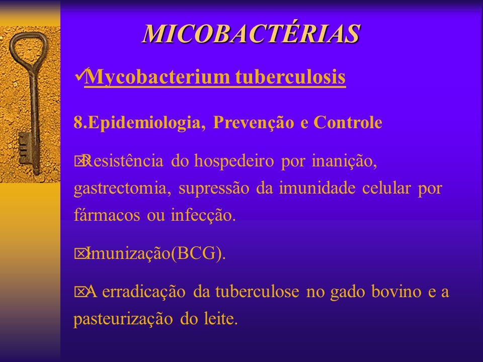 MICOBACTÉRIAS Mycobacterium tuberculosis 8.Epidemiologia, Prevenção e Controle Resistência do hospedeiro por inanição, gastrectomia, supressão da imun