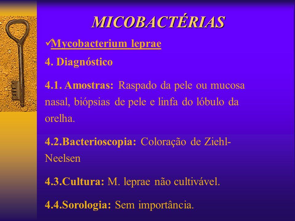MICOBACTÉRIAS Mycobacterium leprae 4. Diagnóstico 4.1. Amostras: Raspado da pele ou mucosa nasal, biópsias de pele e linfa do lóbulo da orelha. 4.2.Ba
