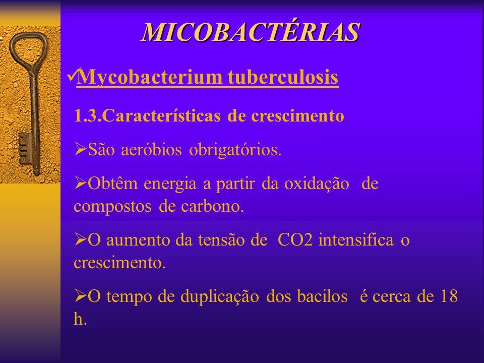 MICOBACTÉRIAS Mycobacterium tuberculosis 1.3.Características de crescimento São aeróbios obrigatórios. Obtêm energia a partir da oxidação de compostos