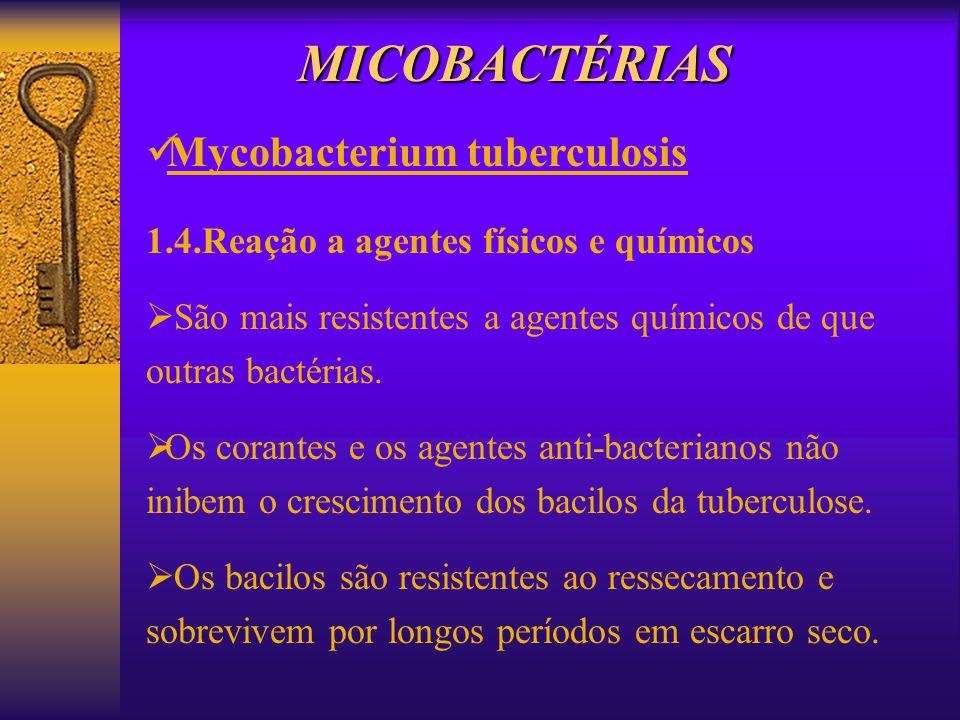 1.4.Reação a agentes físicos e químicos São mais resistentes a agentes químicos de que outras bactérias. Os corantes e os agentes anti-bacterianos não