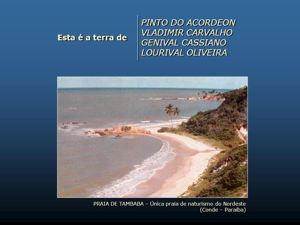 Esta é a terra de ESCURINHO RADEGUNDES FEITOSA DIDA FIALHO FRANCISCO SOARES DE ARAÚJO (Canhoto da Paraíba) ESCURINHO RADEGUNDES FEITOSA DIDA FIALHO FR