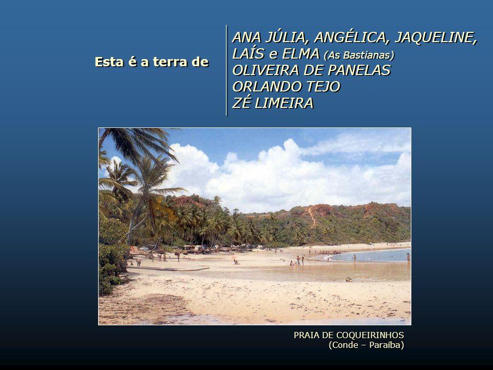 Esta é a terra de PINTO DO ACORDEON VLADIMIR CARVALHO GENIVAL CASSIANO LOURIVAL OLIVEIRA PINTO DO ACORDEON VLADIMIR CARVALHO GENIVAL CASSIANO LOURIVAL