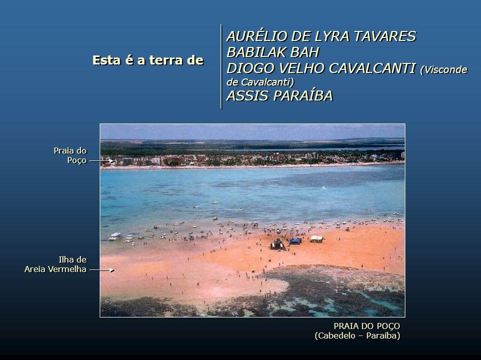 Esta é a terra de WALFREDO RODRÍGUEZ RENATA ARRUDA CHICO CÉSAR ANAYDE DE AZEVEDO BEIRIZ WALFREDO RODRÍGUEZ RENATA ARRUDA CHICO CÉSAR ANAYDE DE AZEVEDO