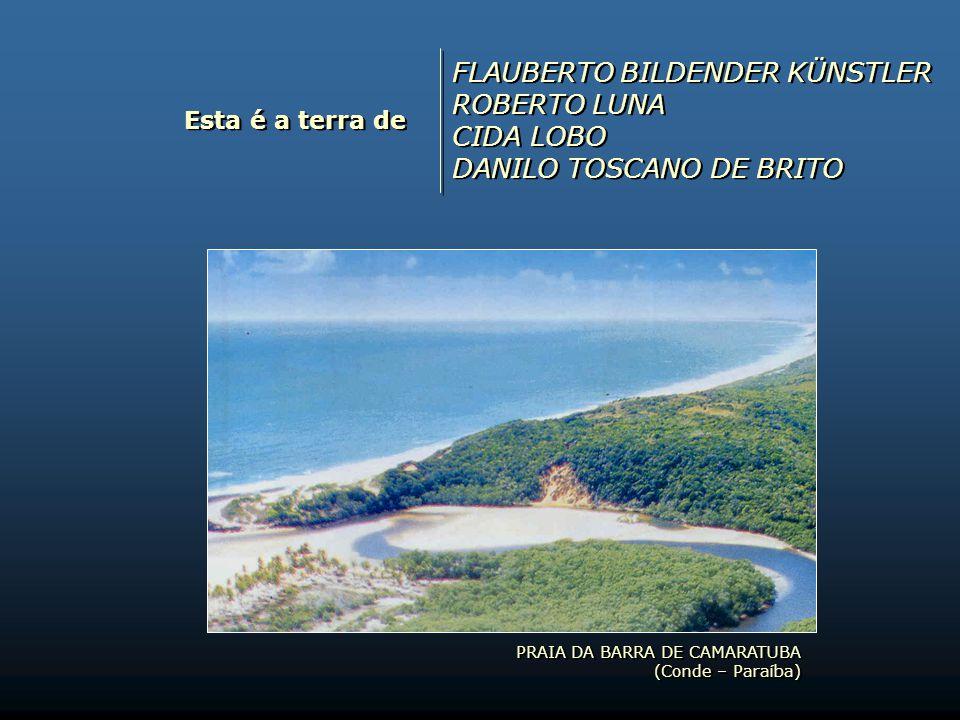 Esta é a terra de MATHEUS BORGES RAUL COELHO FELIPE GONÇALVES ASSIS RODRIGO CLEMENTE DE BRITO PEREIRA MATHEUS BORGES RAUL COELHO FELIPE GONÇALVES ASSI
