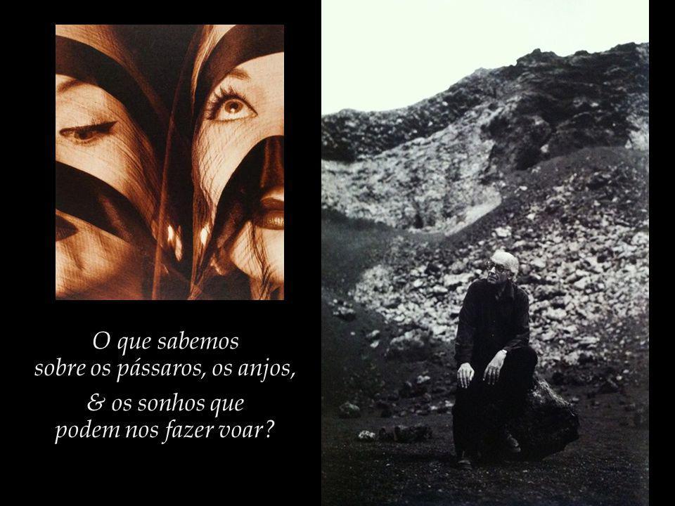 Só os pássaros voam, e os anjos, e os homens, quando sonham... Saramago