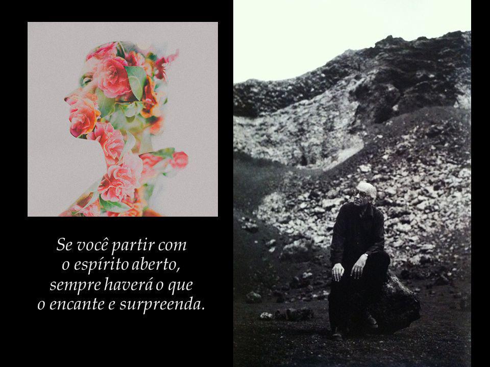Os sonhos que, conforme observa Saramago, nos permitem partilhar do voo dos pássaros e dos anjos.
