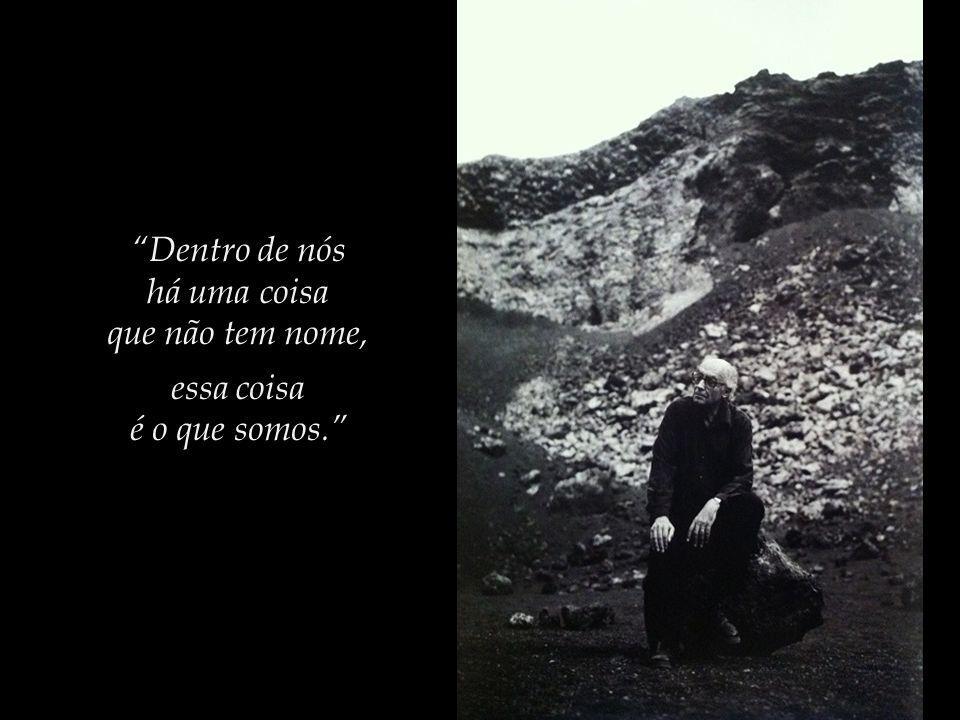 Saramago, no romance Ensaio sobre a Cegueira, escreve:...