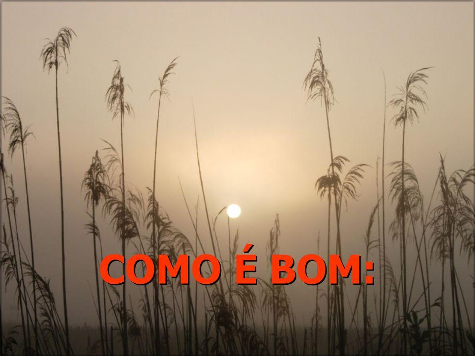 COMO É BOM: