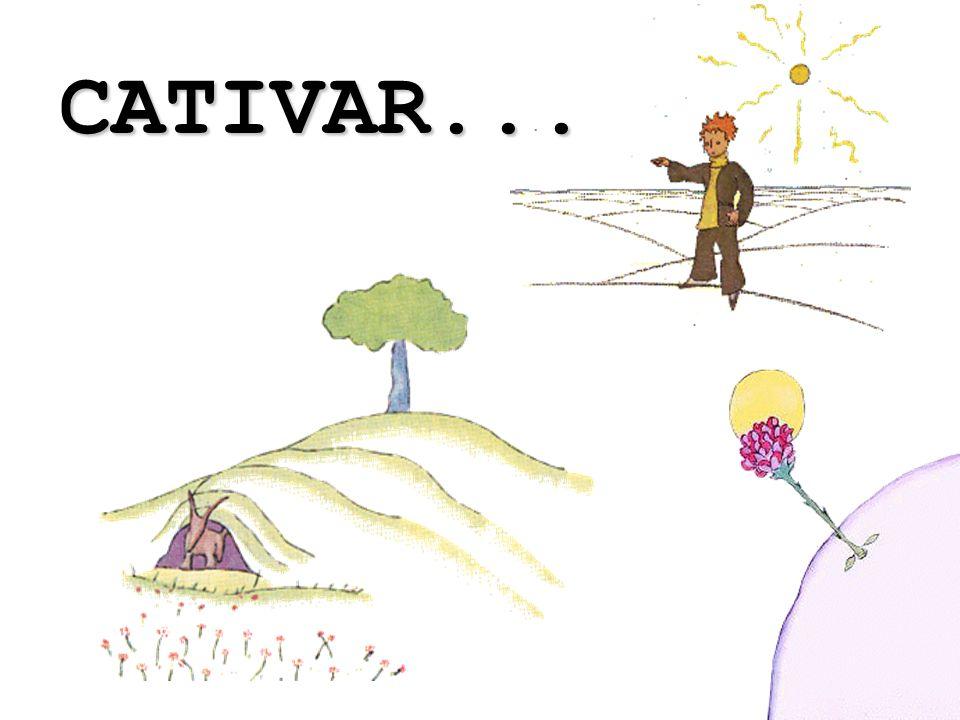 CATIVAR...