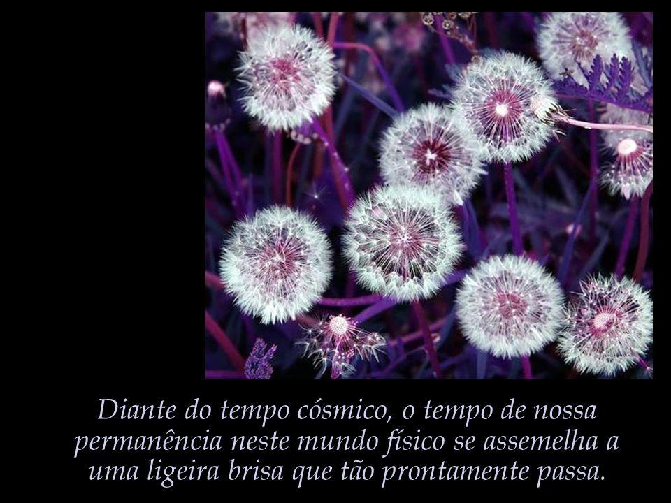 A frágil consistência dos sonhos que sonhamos; E no entanto quão pobre seria a vida não fossem os sonhos sonhados...