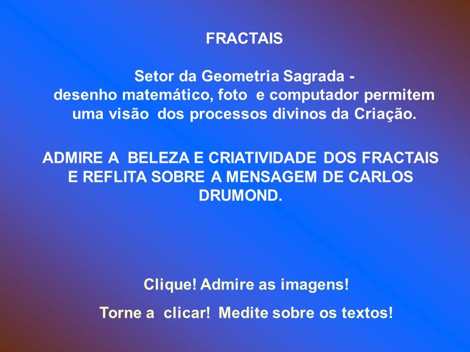 FRACTAIS Setor da Geometria Sagrada - desenho matemático, foto e computador permitem uma visão dos processos divinos da Criação.