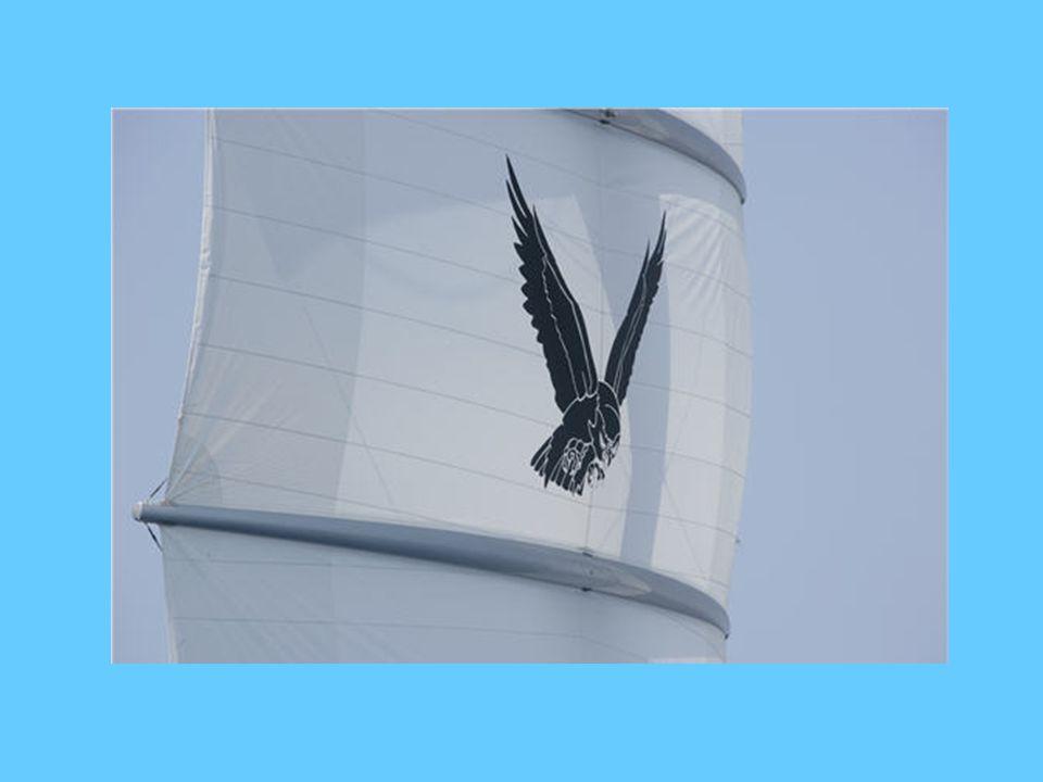 Em toda a embarcação, encontram-se representações do falcão maltês, inclusive nas toalhas do lavabo.