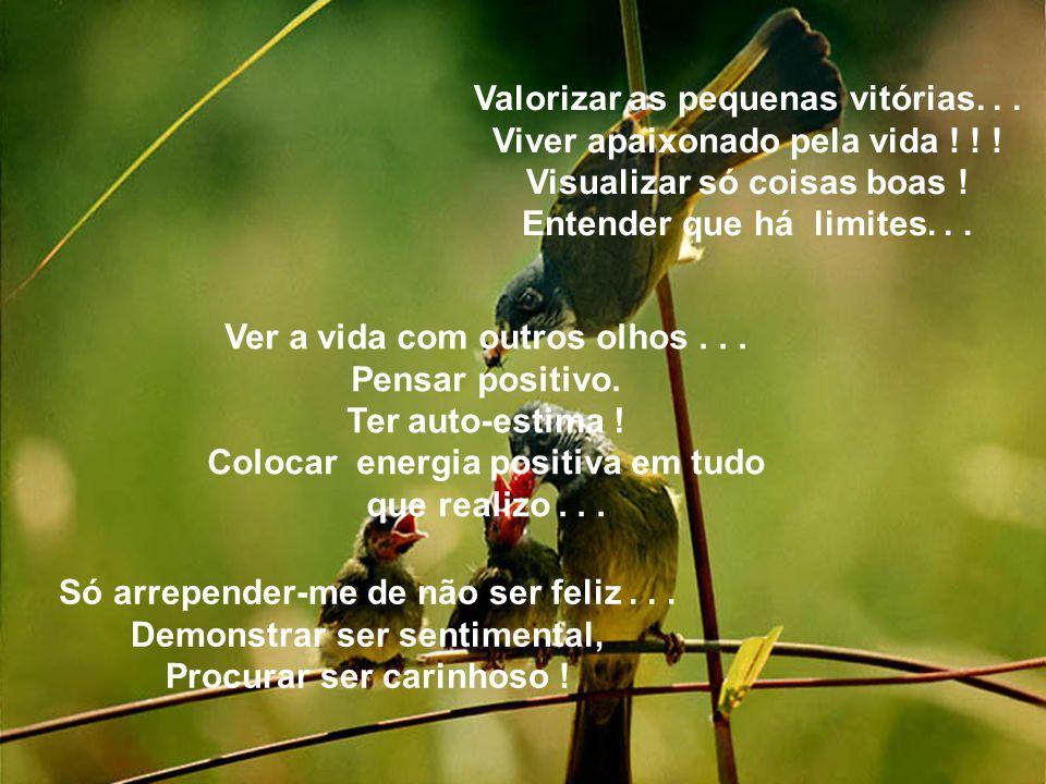 Valorizar as pequenas vitórias...Viver apaixonado pela vida .