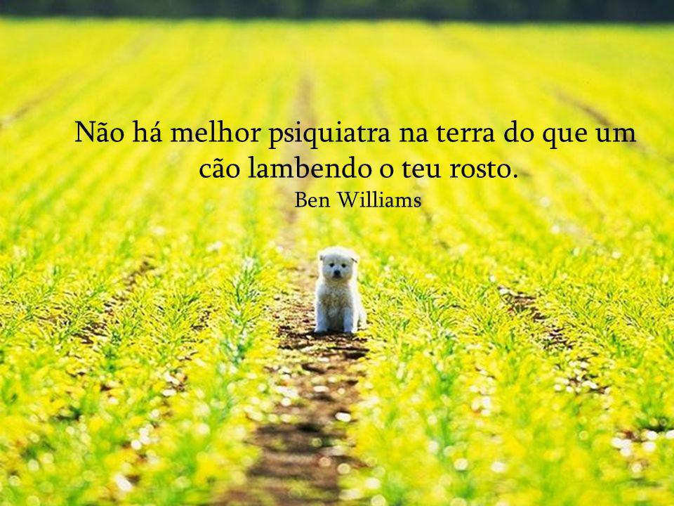 Se recolhes um cão faminto da rua ele não te morderá; É a principal diferença entre um cão e um homem.