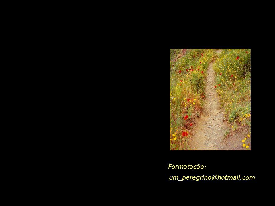 Que nos aguarda, na última curva, da última trilha da vida...? A resposta está nas sementes que hoje plantamos...