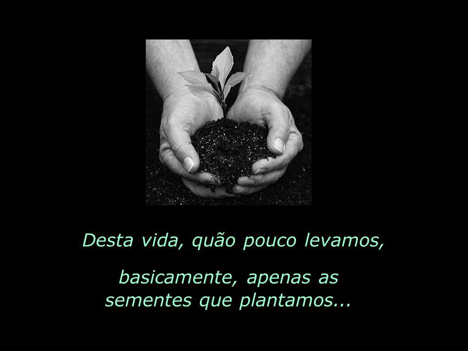Desta vida, quão pouco levamos, basicamente, apenas as sementes que plantamos...