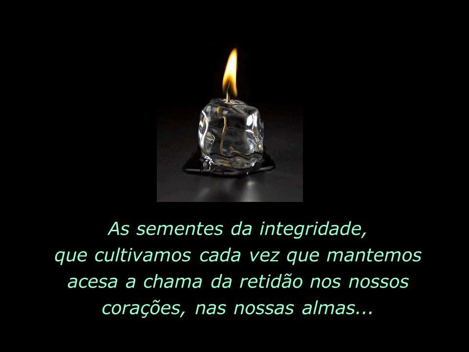 As sementes da integridade, que cultivamos cada vez que mantemos acesa a chama da retidão nos nossos corações, nas nossas almas...