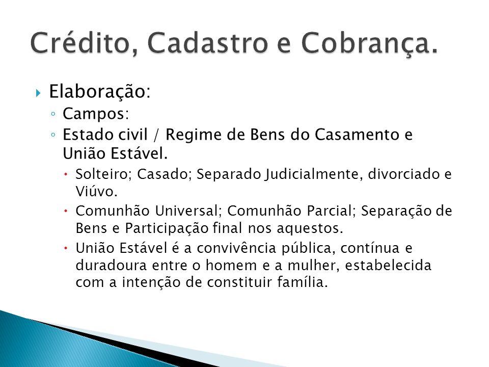 Elaboração: Campos: Capacidade civil.