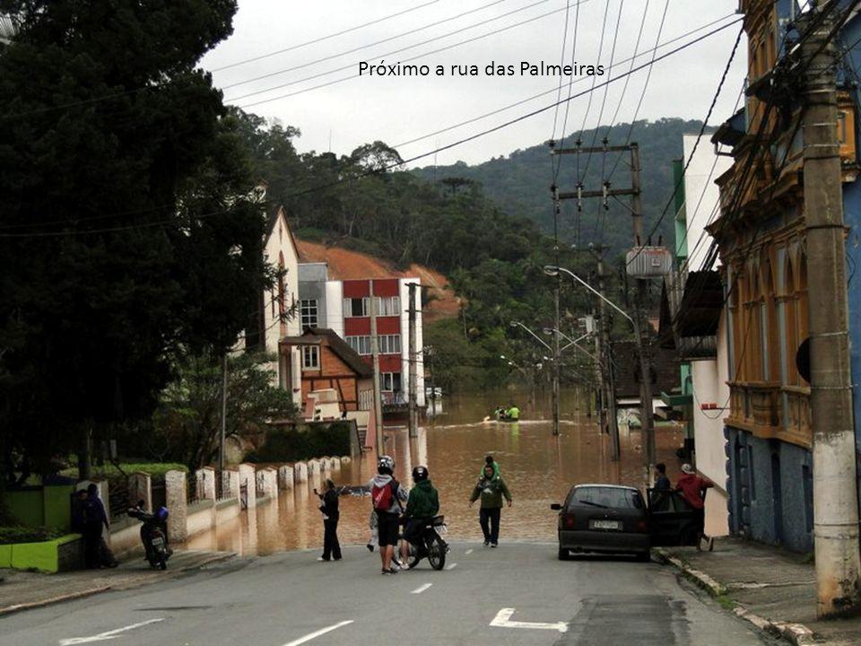 Próximo a rua das Palmeiras