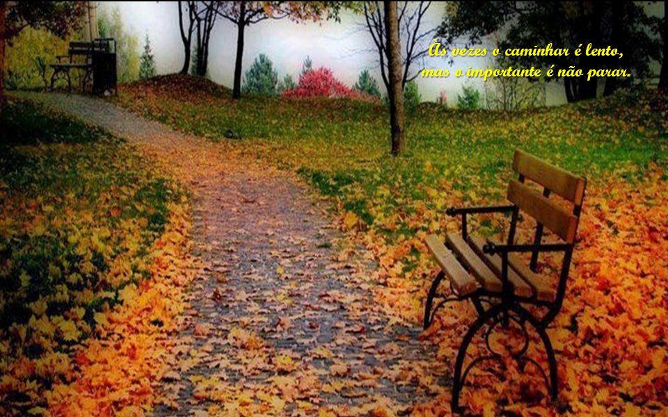 Às vezes o caminhar é lento, mas o importante é não parar mas o importante é não parar.