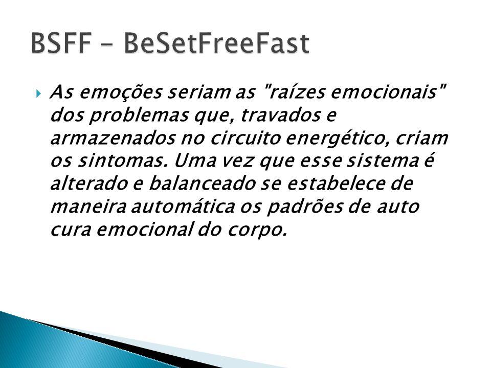 O BSFF trabalha com a idéia de que por traz dos problemas exista um sistema de crenças que ficou enrijecido.