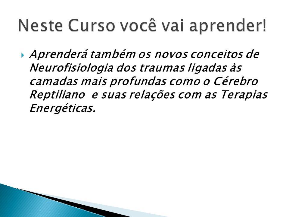 A Neurofisiologia das Terapias Energéticas, que modificam a atividade elétrica do cérebro através de concentração de neuroquímicos, do limiar de ativação neuronal e as conexões neurais que estão disponíveis.